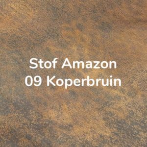 Amazon Koperbruin (09)
